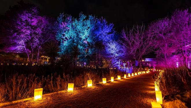 The Wildflower Center's Luminations will be spread out over five weeks this year to allow for social distancing.