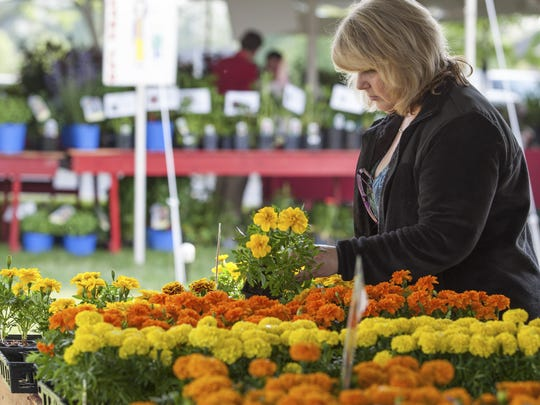 The proceeds from the Wilmington Flower Market will go about 70 charities benefiting children across the state.