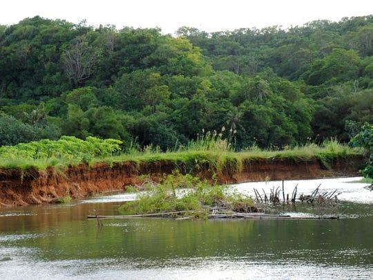 Erosion along the banks of the Talofofo River.