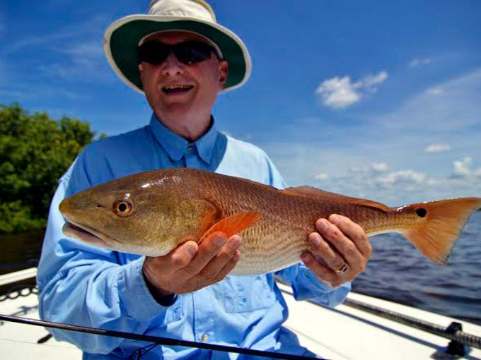Wildfly Charters Capt. Gregg McKee reports redfish