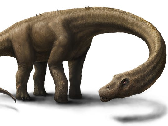 Artist Rendering 2 - Hall - Dreadnoughtus reconstruction