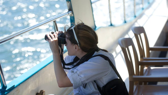 Caroline Coogan, a monitoring and evaluations associate with The Ocean Foundation, looks out for wildlife Friday during a tour of the St. Lucie River with The Everglades Foundation.