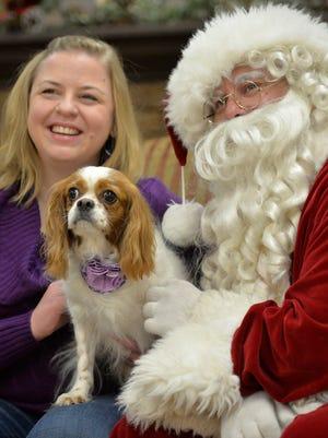 In this file photo Bella, Jill Sakry's Cavalier King Charles spaniel, poses with Santa and Jill at a Santa Paws fundraiser.