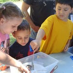 Kids exploring at Science in the Park,  Wheeler Park, Saturday, Sept. 21, 2013.