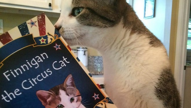 """The real Finnigan the cat, who served as inspiration for Mary Wagner's children's book, """"Finnigan the Circus Cat,"""" poses with the book."""