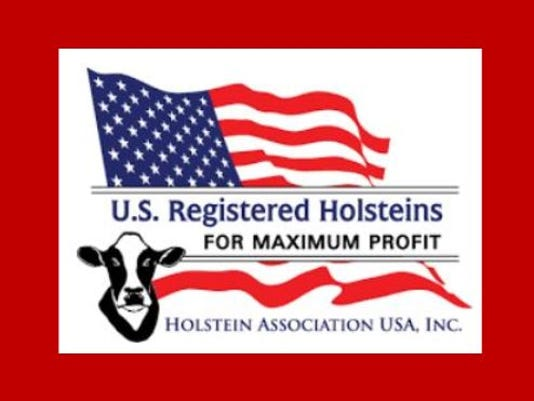 HOlstein USA.JPG