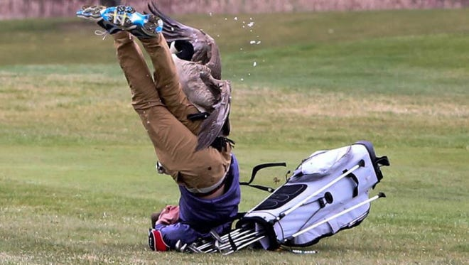 """on Twitter by the school's athletic department.  """"And you thought golf was boring?"""" Blissfield High School's athletic department posted on their Twitter account after a student golfer was attacked by a goose."""