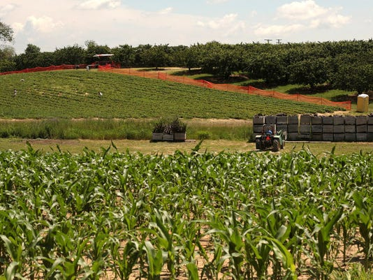 Bumper funding for Michigan's specialty crops