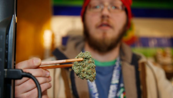 Sales associate Matt Hart uses a pair of chopsticks to hold a bud of Lemon Skunk, the strain of highest potency available at the 3D Dispensary, in Denver in 2014.