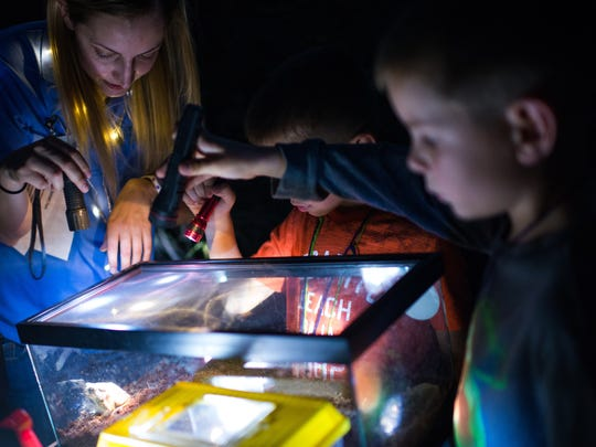 Left to right, Mary Logue shows a toad by flashlight