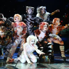 The national touring company performing the Broadway musical 'Cats.'