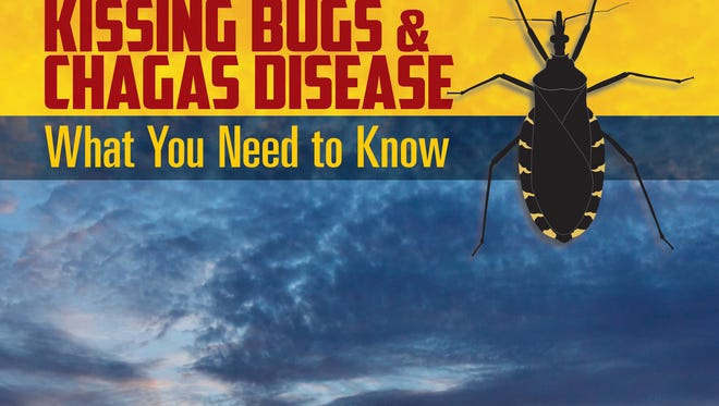 The Texas Chagas Task Force has published a field guide to spread public awareness, while providing resources on risks, symptoms, treatments and testing.