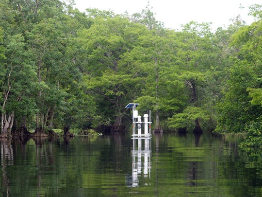 A monitoring station was put in place by the St. Johns River Water Management District along the southern shore of Blue Cypress Lake to measure contaminant levels in the water. Several prominent environmentalists contend the lake is being polluted by runoff from a nearby ranch that fertilizes its pastures with human sewage sludge.