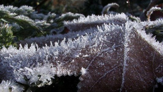 Cincinnati typically sees its first frost on Oct. 22 and Covington on Oct. 24, according to National Weather Service records.