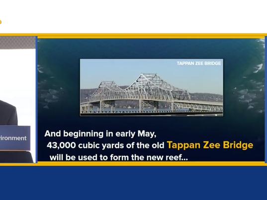 Tappan Zee Bridge reef