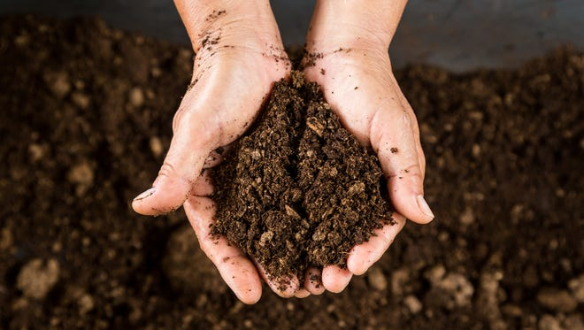 Soil plays an important role in filtering water that we drink and providing the substrate necessary for plants to grow and provide food and oxygen.