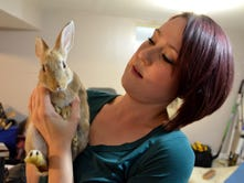 Kalamazoo Rabbit Rescue is finding new homes for abandoned bunnies
