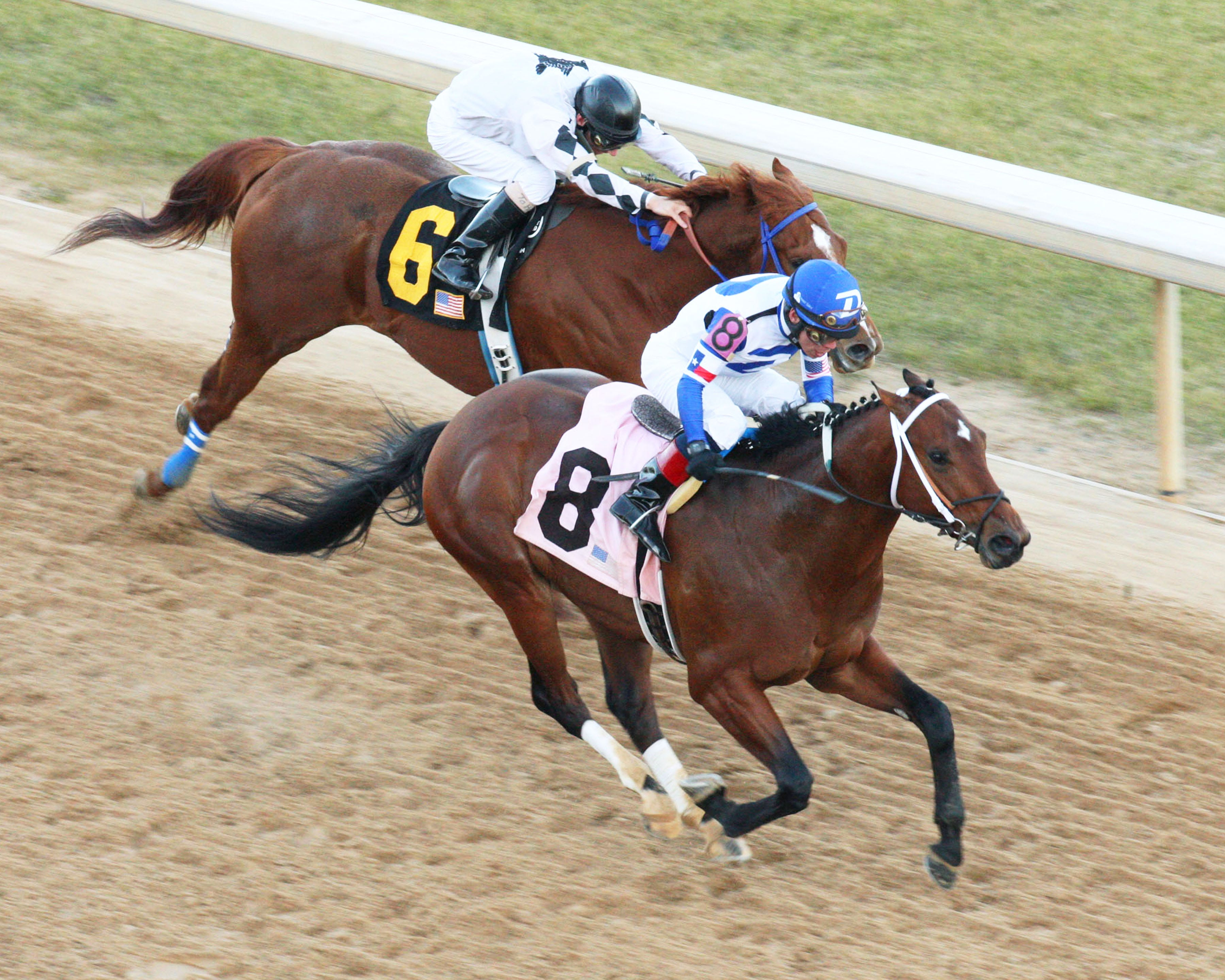 Route du Kentucky Derby/Kentucky Oaks 2014 1390278680000-TANZANITE-CAT---The-Smarty-Jones---Seventh-Running---01-20-14---R08---OP---Aerial