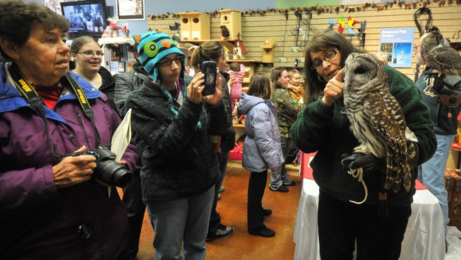 Marge Gibson, right, executive director of the Raptor Education Group Inc., explains the differences between owls Saturday during a fundraiser at Wild Birds Unlimited in Rib Mountain.