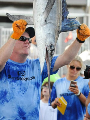 The Absolute Pleasure brought a 63.5  pound white marlin  on the 3rd day of the 43rd Annual White Marlin Open in Ocean City, Md. Megan Raymond Photo