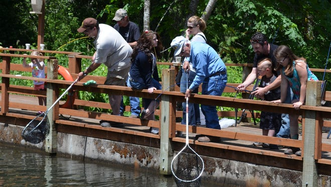 Volunteers are kept hopping during the Free Fishing Weekend event at Roaring River Hatchery near Scio.