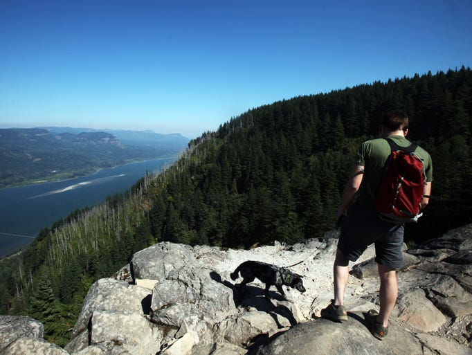 The popular Angel's Rest Trail, roughly 4.5 miles up and down, leads to a beautiful view of the Columbia River Gorge.