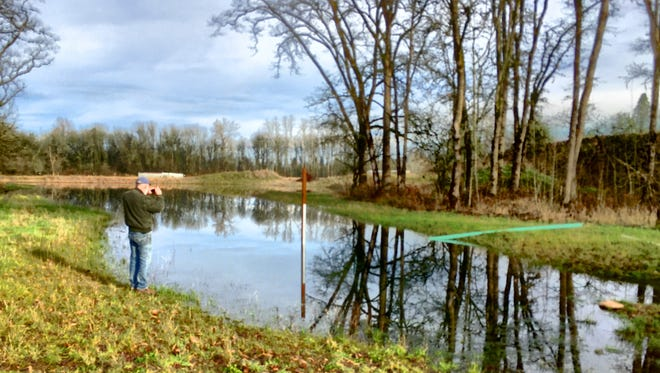 Stayton interim Public Works Director Mike Brash seen here in December of 2014 gauging the water level of a retention pond for Phillips Estates and Quail Run in northwest Stayton.