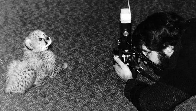"""Cincinnati Enquirer photographer Glenn Hartong approaches an animal he identified as a """"snipe"""" with a snipe catching device he had disguised as a camera and flash unit recently at the Cincinnati Zoo."""
