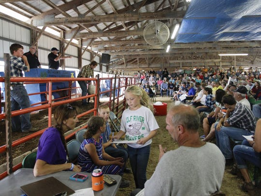 Hundreds attend the 4-H youth livestock auction at last year's Outagamie County Fair in Seymour.