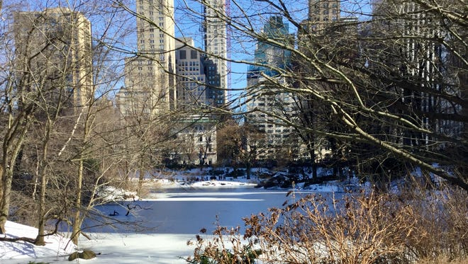 The Pond in Central Park West on St. Patrick's Day in New York City.