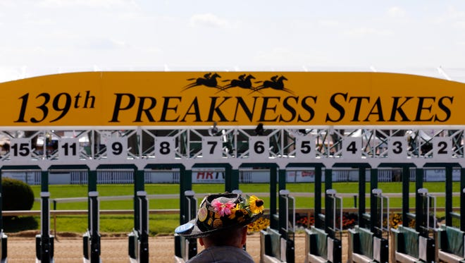 The starting gate is moved into place before the 139th Preakness Stakes at Pimlico Race Course in 2014.