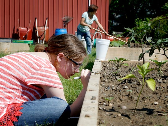 Each plot of the community garden behind the South Corning Town Hall are marked with letters and numbers. A garden bed can be rented for $15 a year.