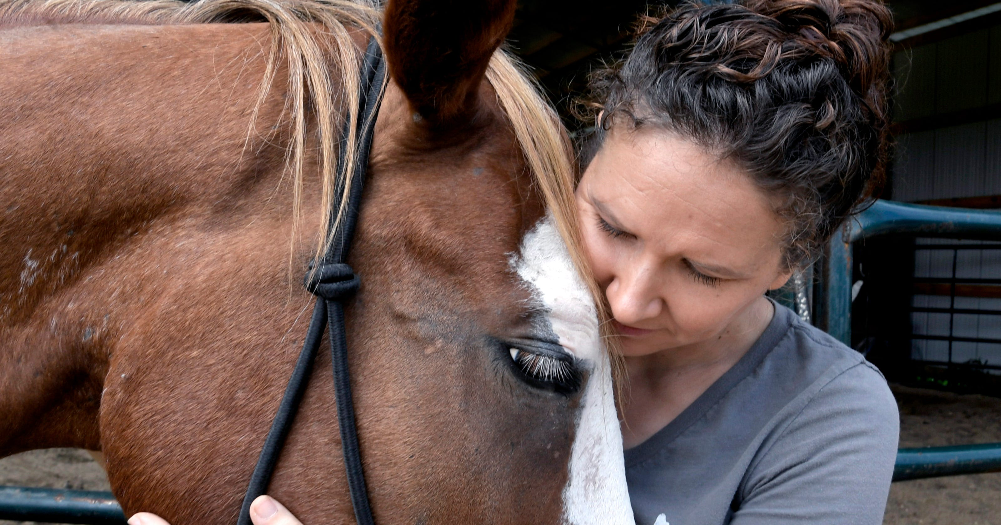 Horse Plus Humane Society pushes for more protections in