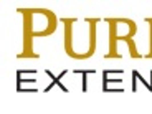 635803239856905650-extension-logo