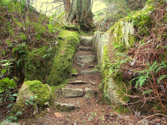 stairway-to-wilderness-hiking-1400435