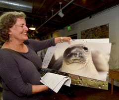 The Star's 'Picture this' raises funds for Bell Arts Factory