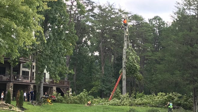 A tree service worker was rescued after being pinned by a falling treetop about 50 feet above the ground Tuesday in South Knoxville.