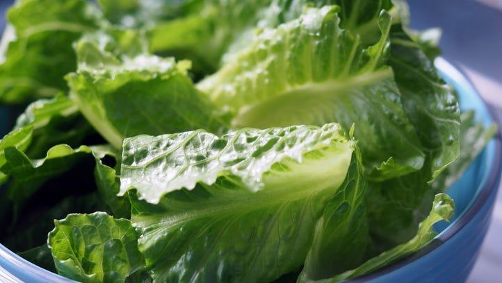 E. coli in Romaine lettuce? NJ's 10 worst food-poisoning outbreaks