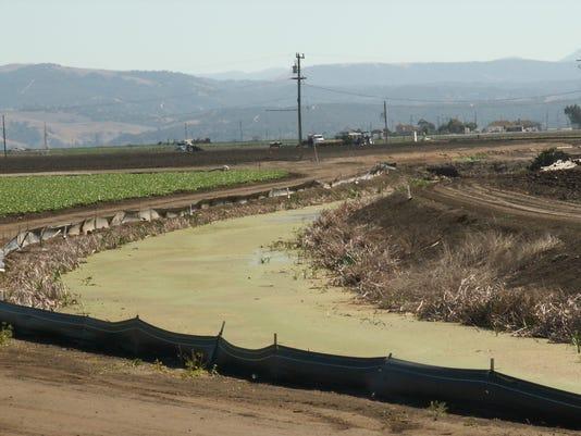 636380773383882556-Tembladero-Slough-Salinas-Valley.jpg