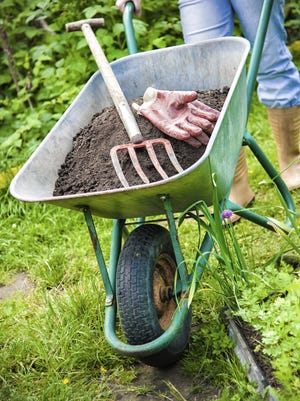 It's time to sharpen your tools and clean out old garden beds if you neglected that task last fall.