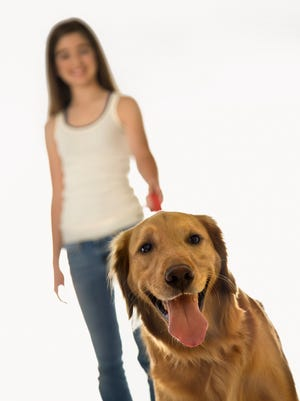 Have a passion for pups?  Consider volunteering to walk dogs at a local animal shelter.