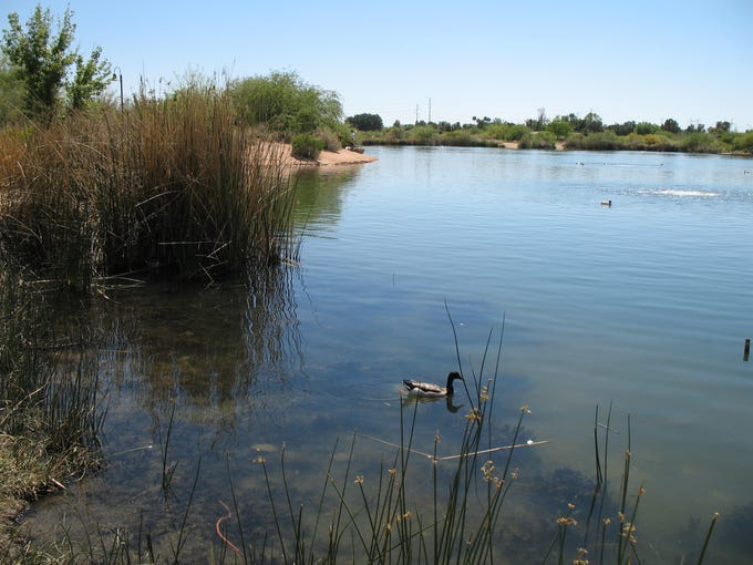 Gilbert Riparian Preserve: Check out images of the preserve and Water Ranch Lake. ...