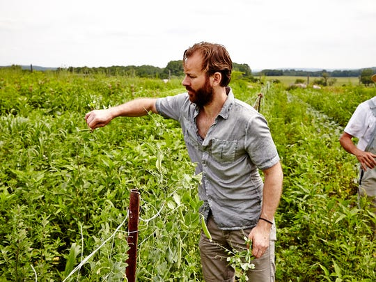 Chef and author Mads Refslund is shown among the peas and weeds at Comeback Farm in Asbury.