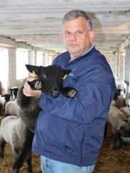 Each year Darren Sattler raises between 80-90 lambs