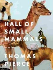 """Hall of Small Mammals"" by Thomas Pierce"