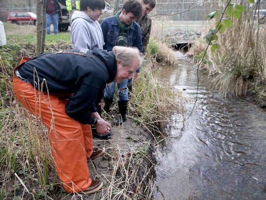 Discovery School science teacher Jerry Polley and students Noah McKenzie, Kayla Robinson, and Dylan Stevenson watch the coho salmon fry that released at Beaver Creek at the Manchester Fuel Depot swim away.