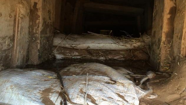 Border patrol agents discovered a 230-foot underground tunnel that crosses the United States and Mexico border. They found it Monday following a drug bust.