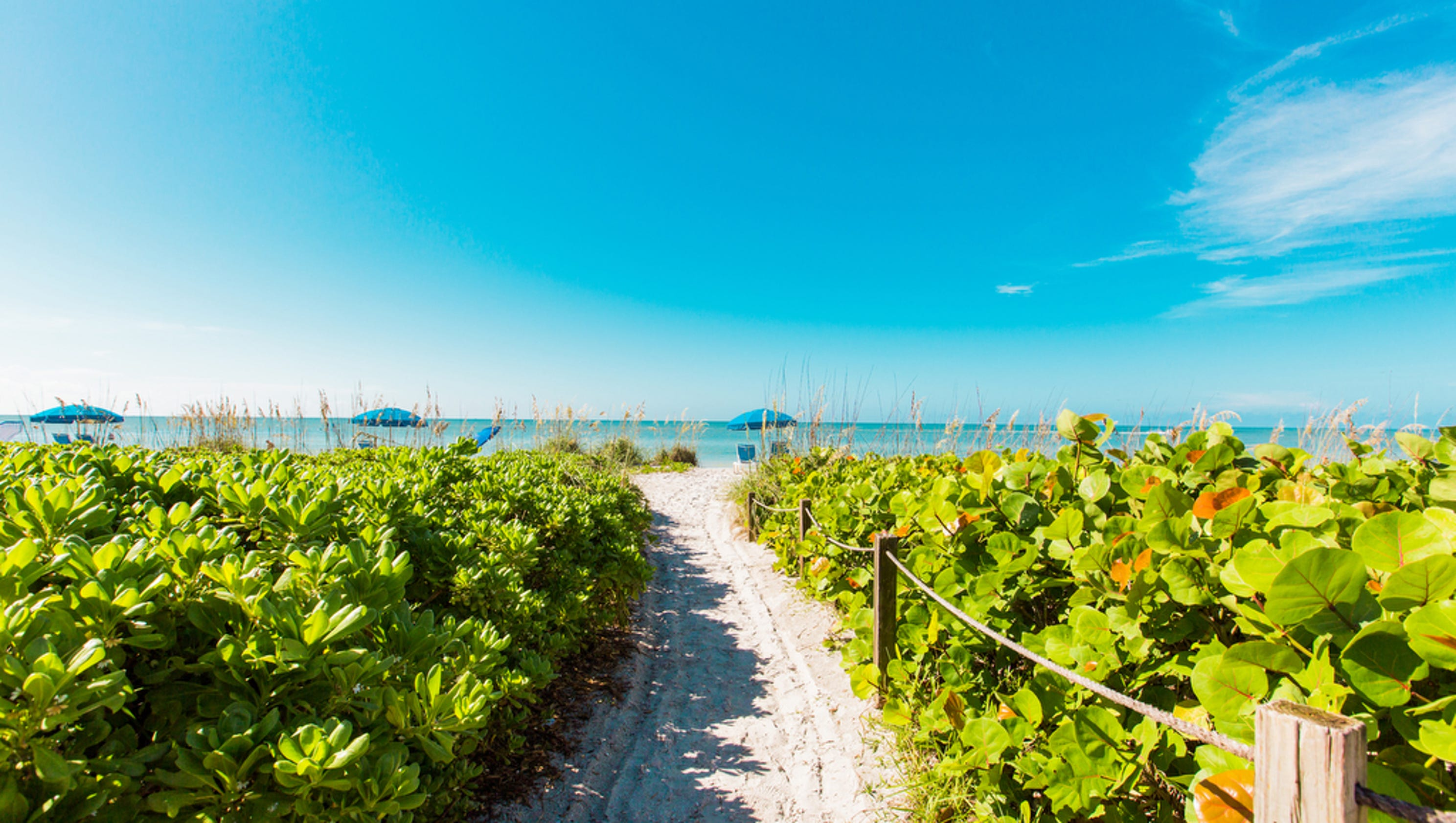 Explore these SW FL gems this summer