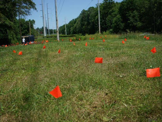 The Delaware SPCA's Stanton pet cemetery contains the remains of more than 1,000 animals. Volunteers are trying to mark graves with orange flags to let owners know where their pets can be located if they choose to relocate the animals.