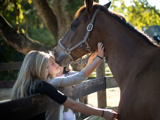 Izabella Gosttschall, right, and her sister, Sophia, talk to one of the remaining horses at the Masterpiece Equestrian Center in Davie on Dec. 16. Izabella recently lost her horse to a batch of feed tainted by additives safe for other livestock but toxic to horses. The Masterpiece Equestrian Center, where 22 horses were poisoned by tainted feed, has reached a settlement with the company that produced and sold the feed.